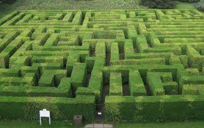 Labirinti burocratici e diritti negati